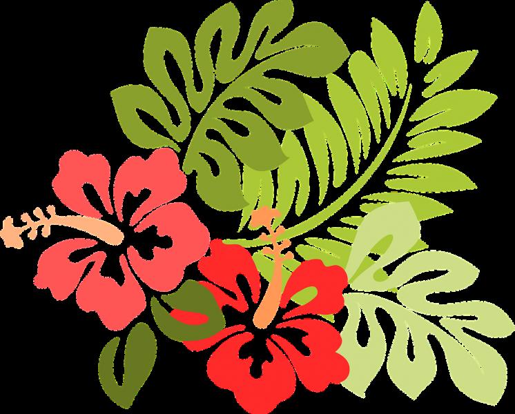 hawaii-309006_1280
